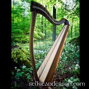 Keltische-Harfe